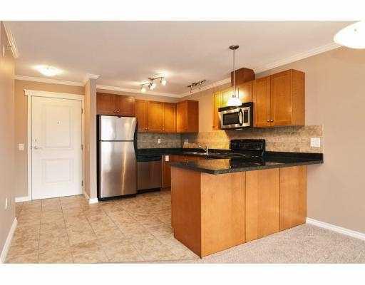 Photo 3: Photos: 414 22255 122 Street in Maple Ridge: Condo for sale : MLS®# V1028274
