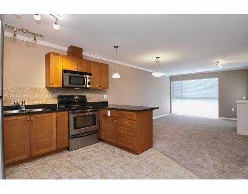 Photo 4: Photos: 414 22255 122 Street in Maple Ridge: Condo for sale : MLS®# V1028274