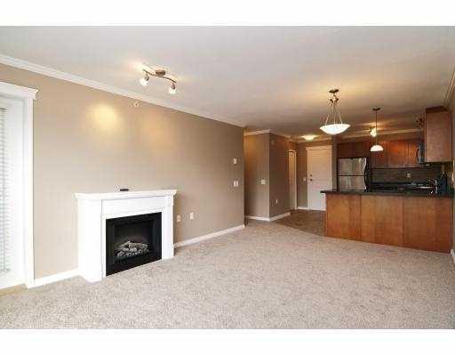 Photo 6: Photos: 414 22255 122 Street in Maple Ridge: Condo for sale : MLS®# V1028274