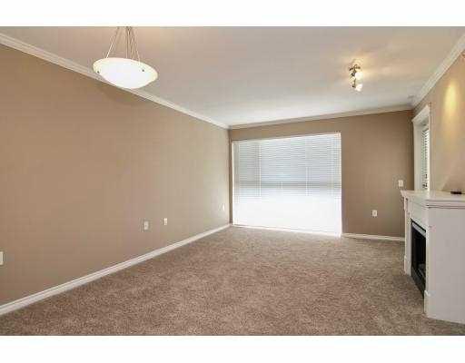 Photo 5: Photos: 414 22255 122 Street in Maple Ridge: Condo for sale : MLS®# V1028274