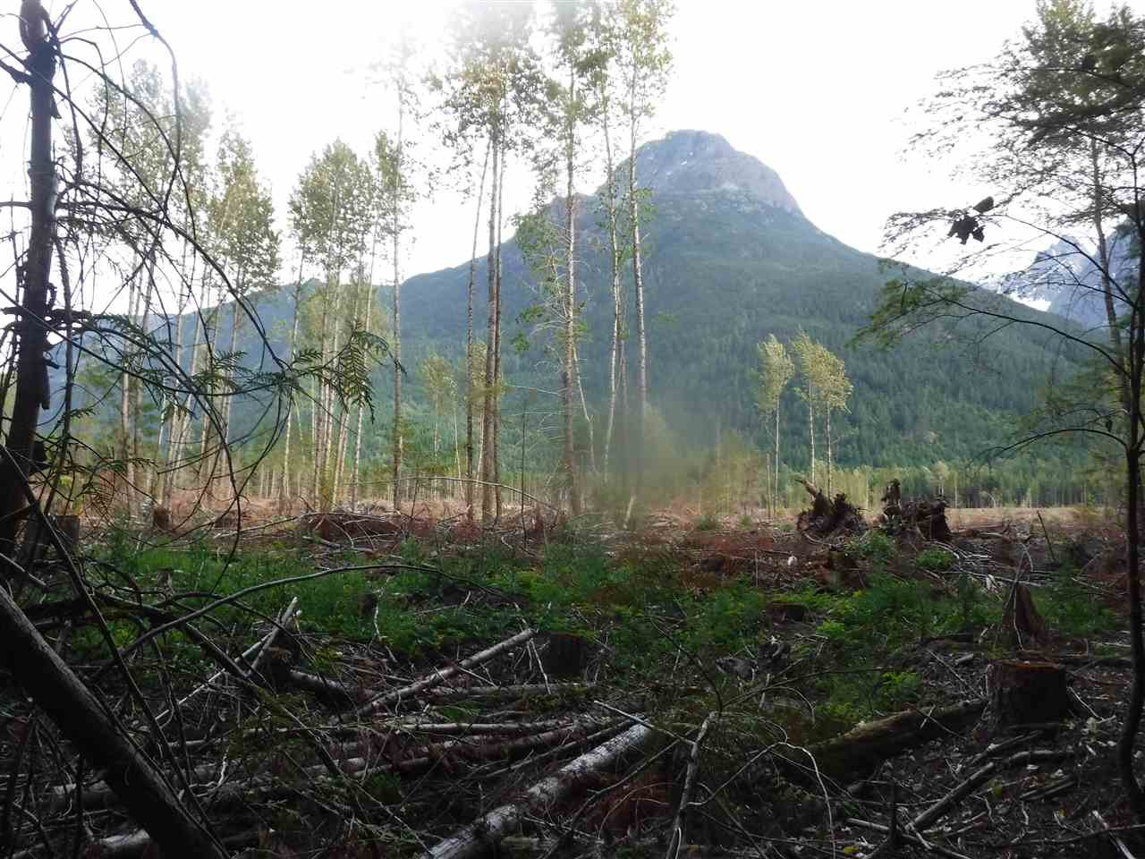 Photo 3: Photos: 3975 EAST HAMMER Road in Bella Coola: Bella Coola/Hagensborg Land for sale (Williams Lake (Zone 27))  : MLS®# R2483527