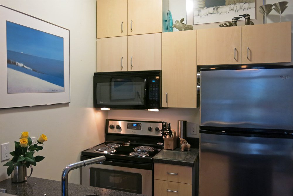 Photo 3: Photos: 211 22 E Cordova Street in : Downtown VW Condo for sale (Vancouver West)  : MLS®# V1045375