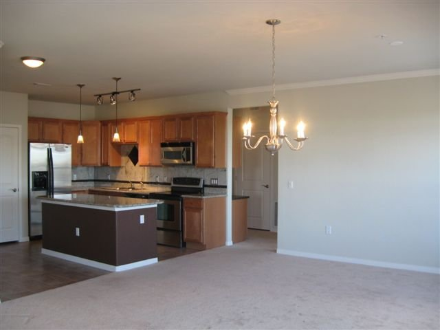 Photo 9: Photos: 10176 Park Meadows Drive in Lone Tree: House Fourplex for sale : MLS®# 949009