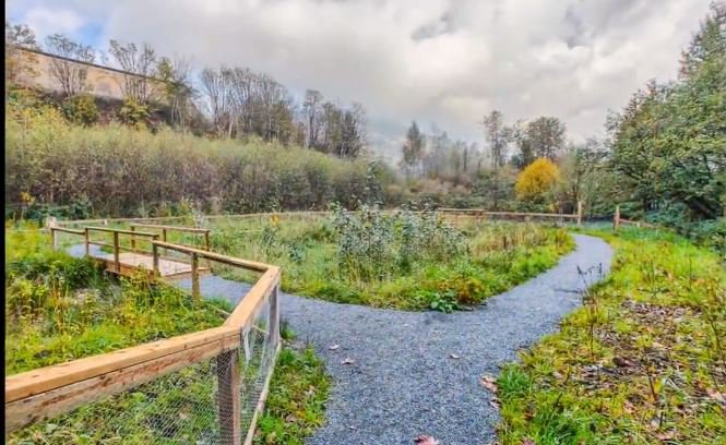 Photo 15: Photos: #308 2242 Whatcom Rd in Abbotsford: Abbotsford East Condo for rent