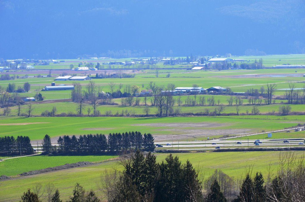 Photo 36: Photos: 36061 Spyglass in Abbotsford: Central Abbotsford House for sale : MLS®#  F1434640