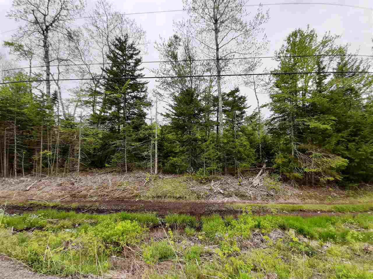 Main Photo: Lot A2 Aylesford Road in Lake Paul: 404-Kings County Vacant Land for sale (Annapolis Valley)  : MLS®# 202009529
