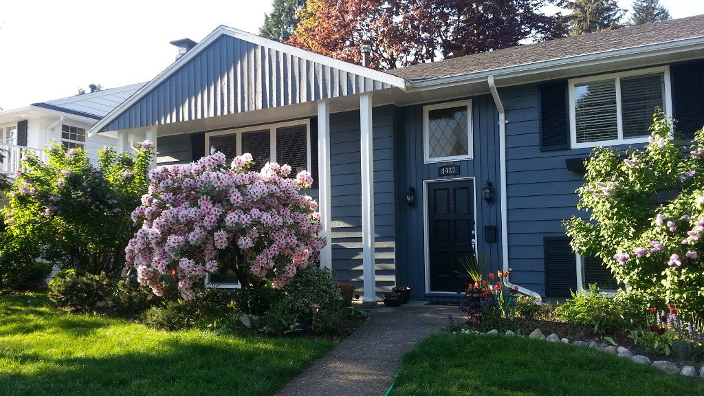 Photo 1: Photos: Patterdale Drive in North Vancouver: Canyon Heights House for rent