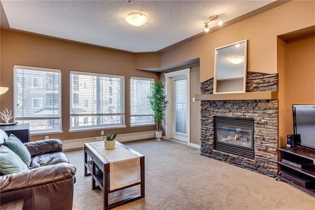 Main Photo: 236 10 Discovery Ridge Close SW in Calgary: Discovery Ridge Apartment for sale : MLS®# C4302410