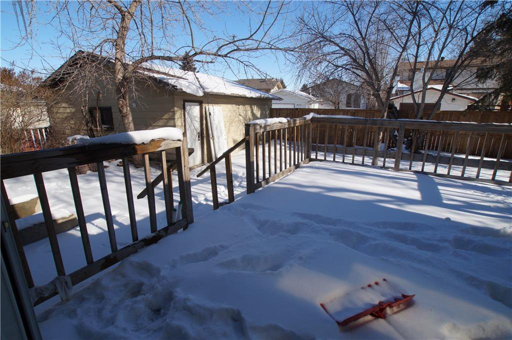 Photo 44: Photos: 56 TEMPLEWOOD RD NE in Calgary: Temple House for sale : MLS®# C4232506