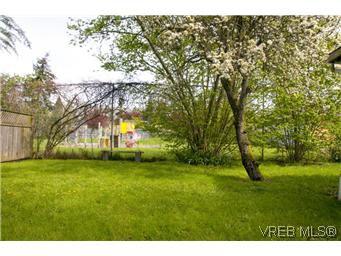 Photo 14: Photos: 982 Darwin Avenue in VICTORIA: SE Quadra Residential for sale (Saanich East)  : MLS®# 293057