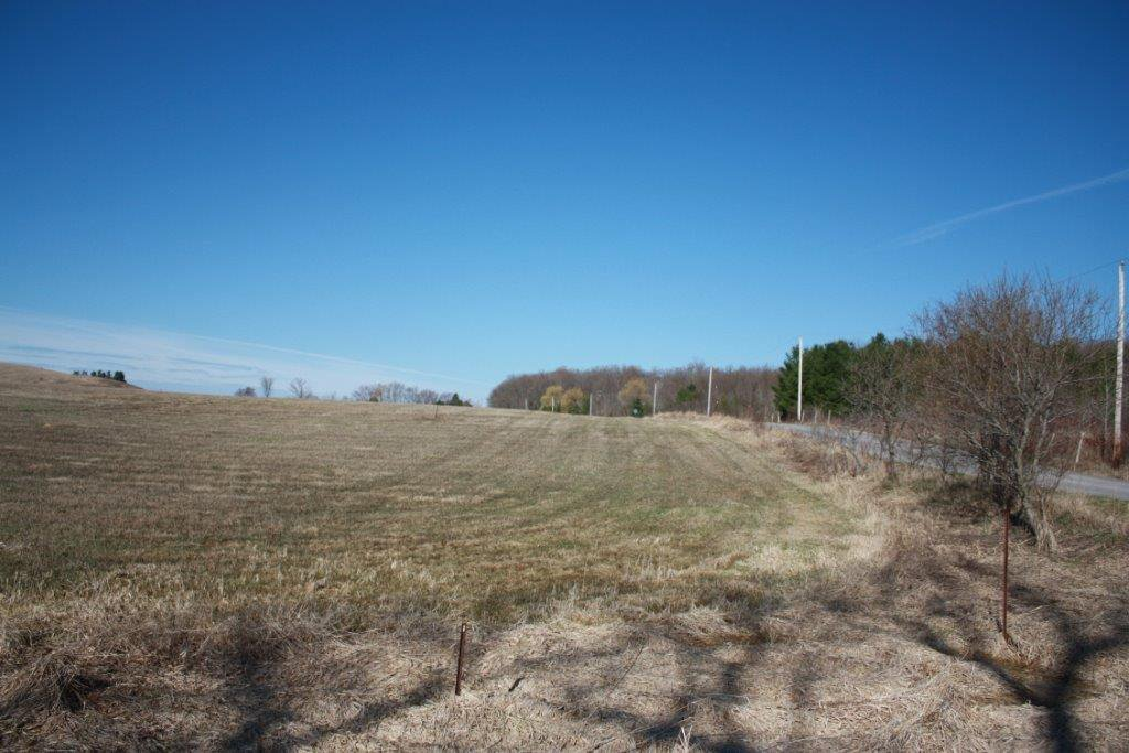 Main Photo: 0 W/S DeJong Road in Hamilton Twp: Land Only for sale : MLS®# 191114