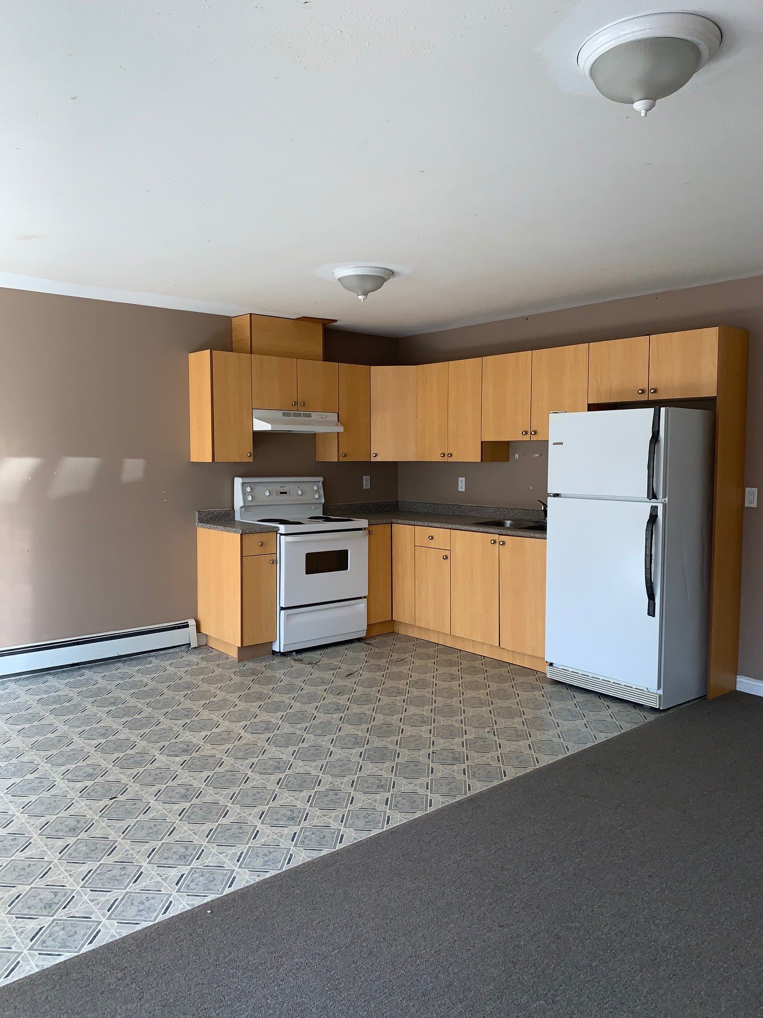 Main Photo: BSMT 267 Columbia St. in Abbotsford: Condo for rent