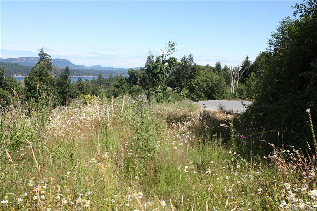 Photo 11: Photos: 140 LEE ANN Rd in Salt Spring: GI Salt Spring Land for sale (Gulf Islands)  : MLS®# 844846