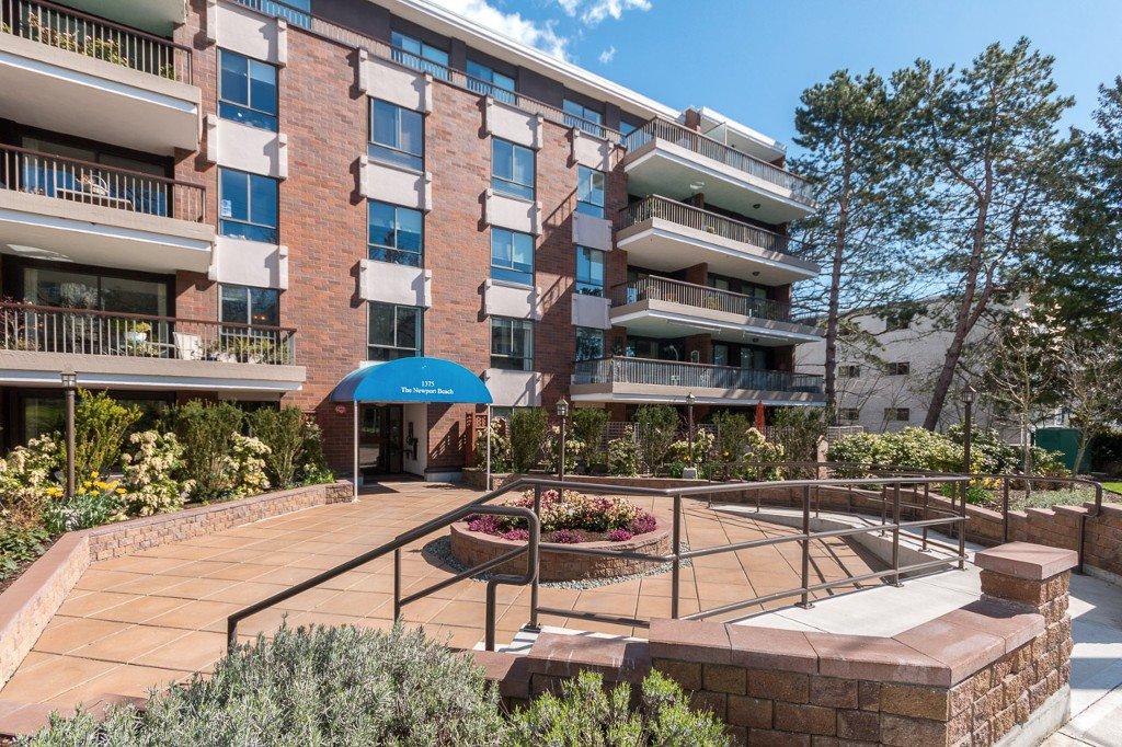 Main Photo: 105 1375 Newport Avenue in Victoria: Condo for sale : MLS®# 376044