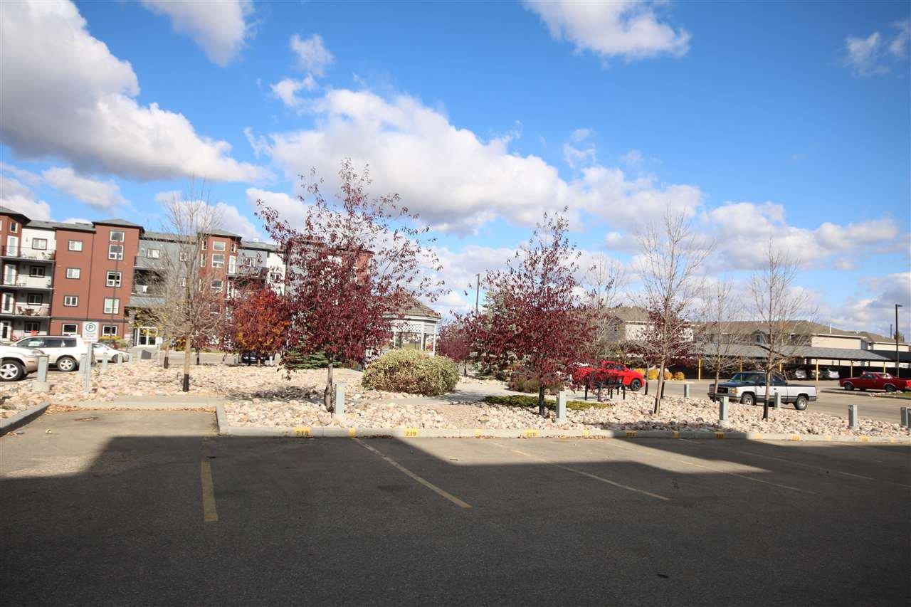Main Photo: 208 396 SILVER_BERRY Road in Edmonton: Zone 30 Condo for sale : MLS®# E4176792