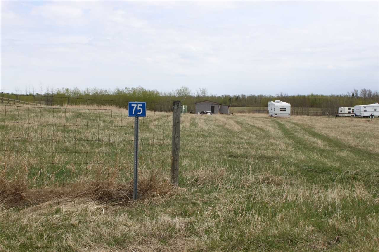 Photo 6: Photos: 75 22111 TWP RD 510: Rural Leduc County Rural Land/Vacant Lot for sale : MLS®# E4178651