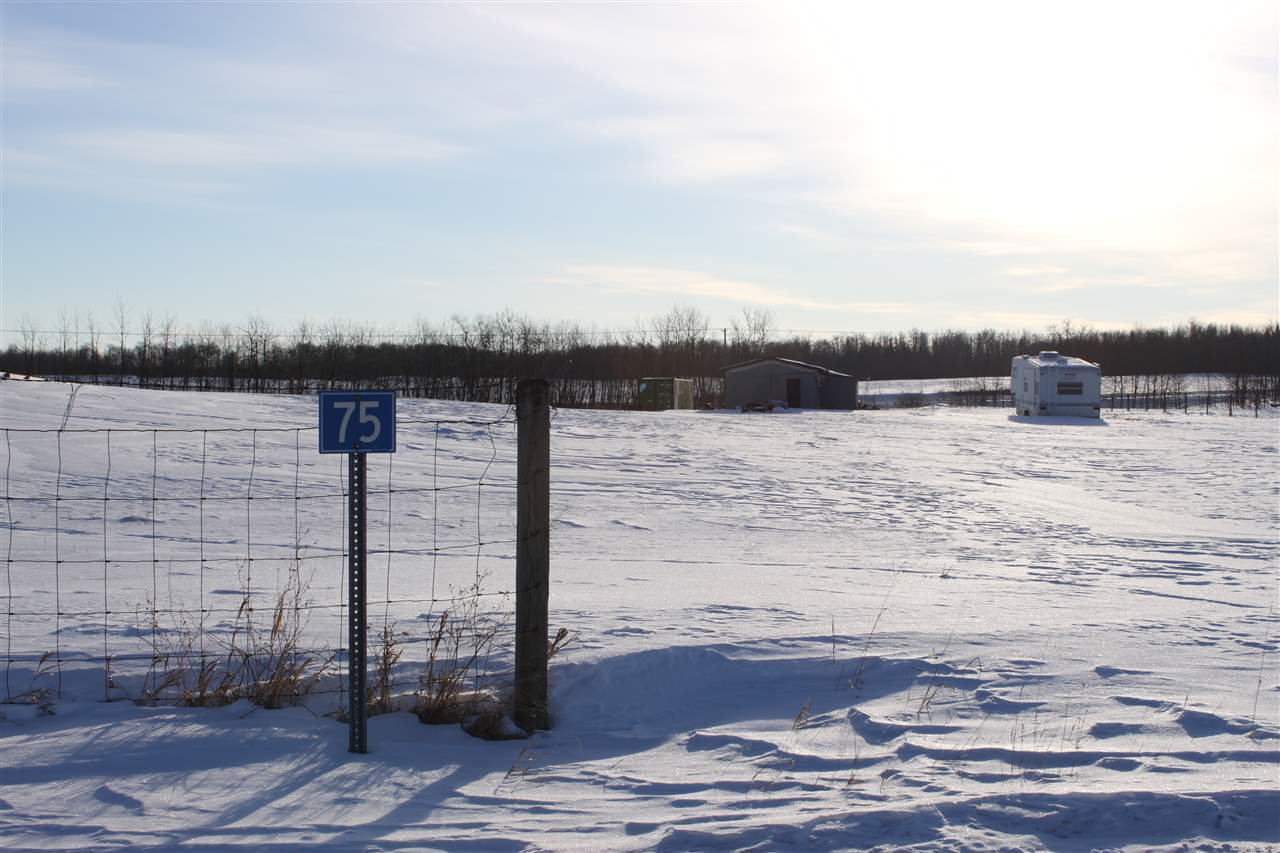 Photo 4: Photos: 75 22111 TWP RD 510: Rural Leduc County Rural Land/Vacant Lot for sale : MLS®# E4178651