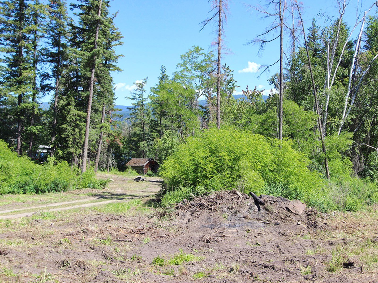 Photo 30: Photos: 663 Waverly Park Frontage Road in Sorrento, BC: Land Only for sale (Sorrento)  : MLS®# 10186241