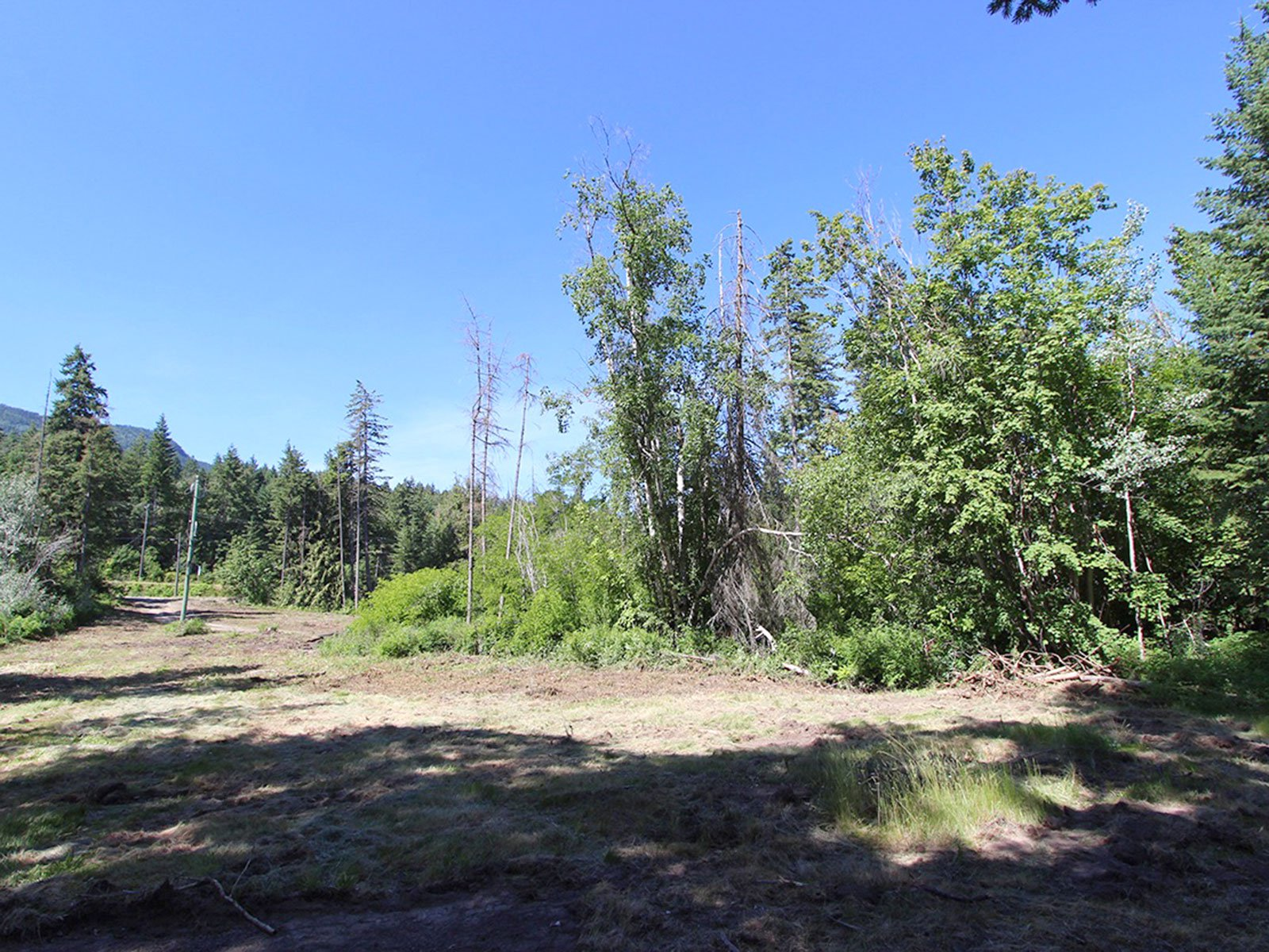 Photo 34: Photos: 663 Waverly Park Frontage Road in Sorrento, BC: Land Only for sale (Sorrento)  : MLS®# 10186241