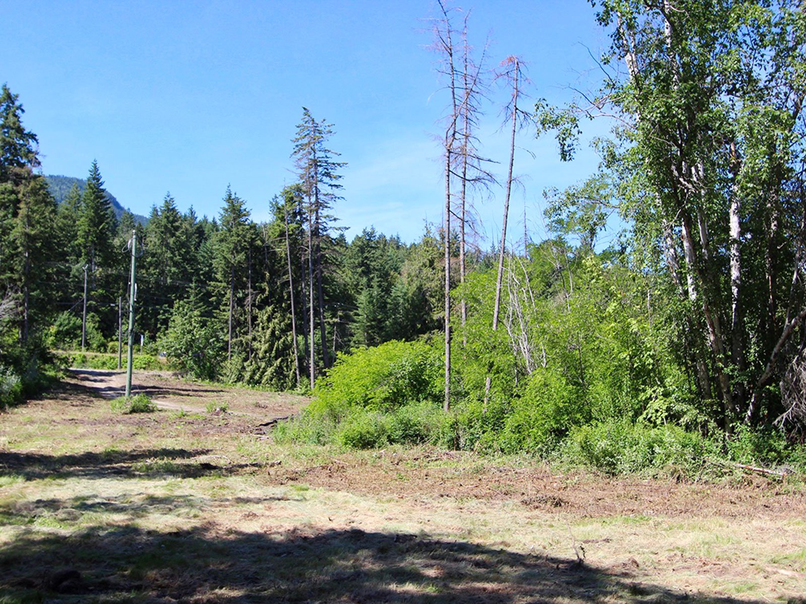 Photo 35: Photos: 663 Waverly Park Frontage Road in Sorrento, BC: Land Only for sale (Sorrento)  : MLS®# 10186241