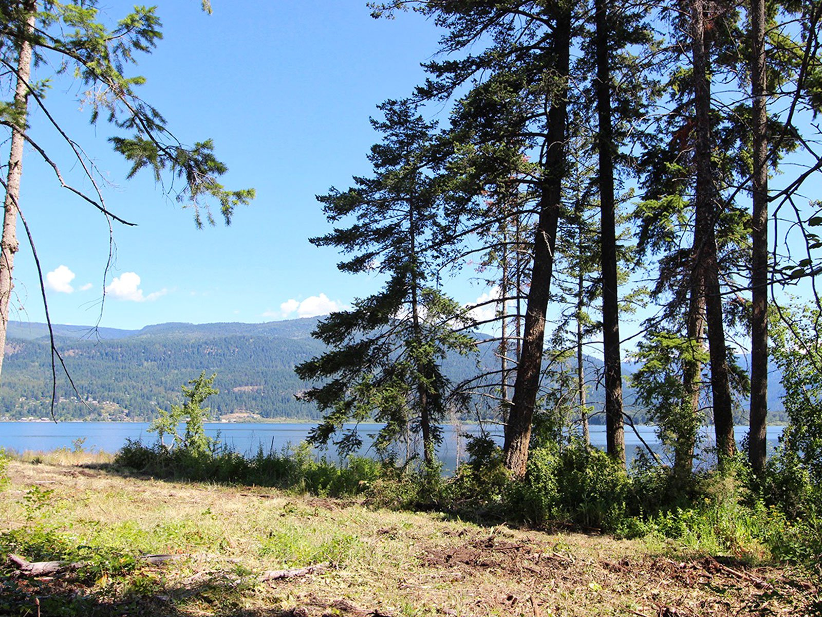 Photo 37: Photos: 663 Waverly Park Frontage Road in Sorrento, BC: Land Only for sale (Sorrento)  : MLS®# 10186241