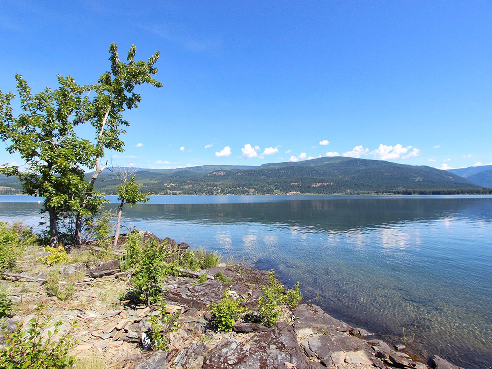 Photo 7: Photos: 663 Waverly Park Frontage Road in Sorrento, BC: Land Only for sale (Sorrento)  : MLS®# 10186241