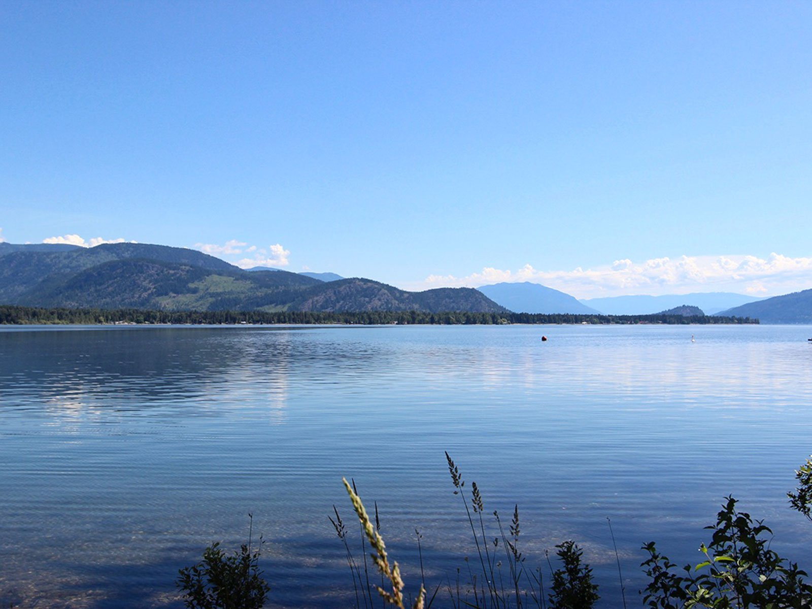 Photo 38: Photos: 663 Waverly Park Frontage Road in Sorrento, BC: Land Only for sale (Sorrento)  : MLS®# 10186241