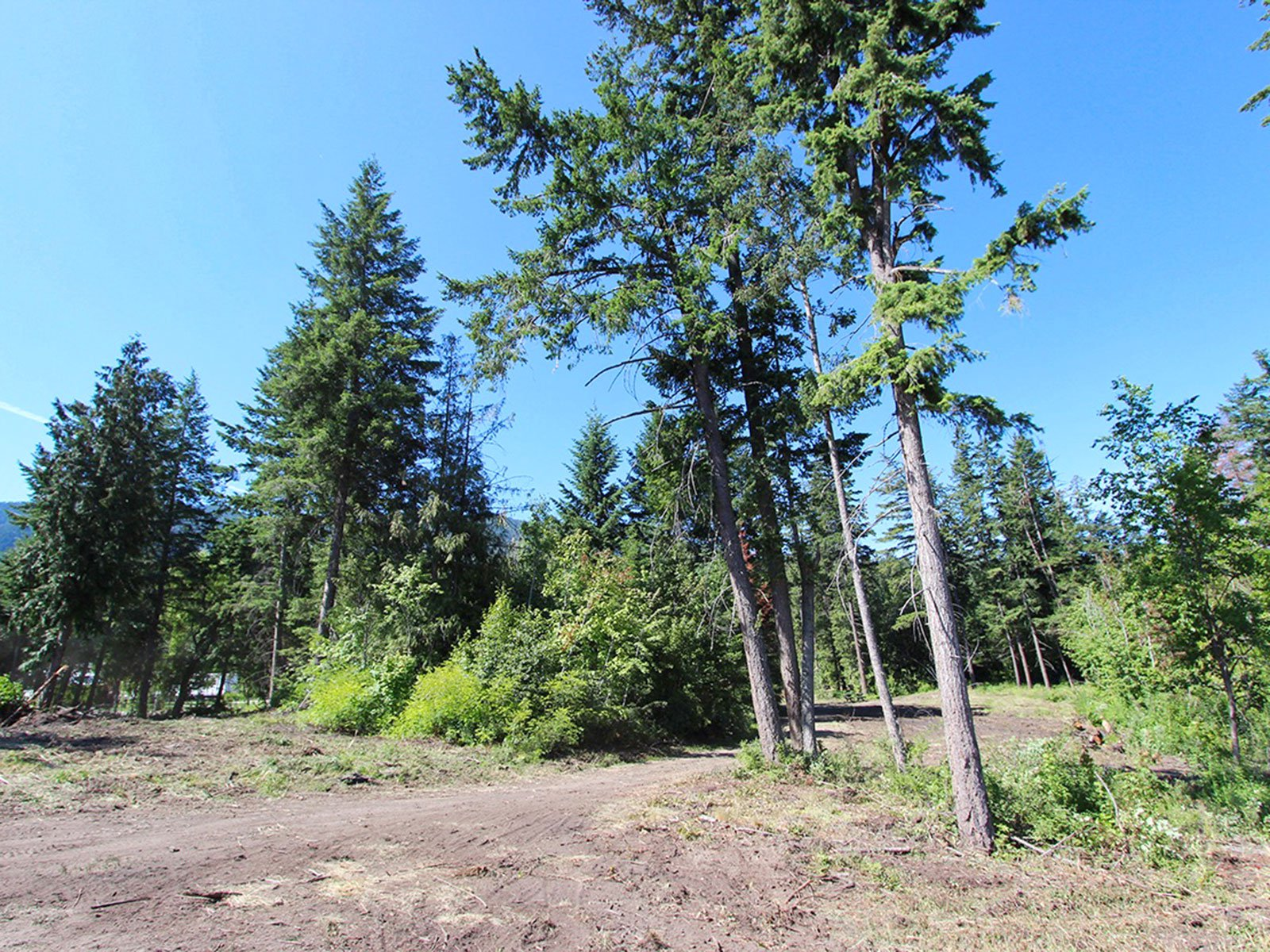 Photo 12: Photos: 663 Waverly Park Frontage Road in Sorrento, BC: Land Only for sale (Sorrento)  : MLS®# 10186241