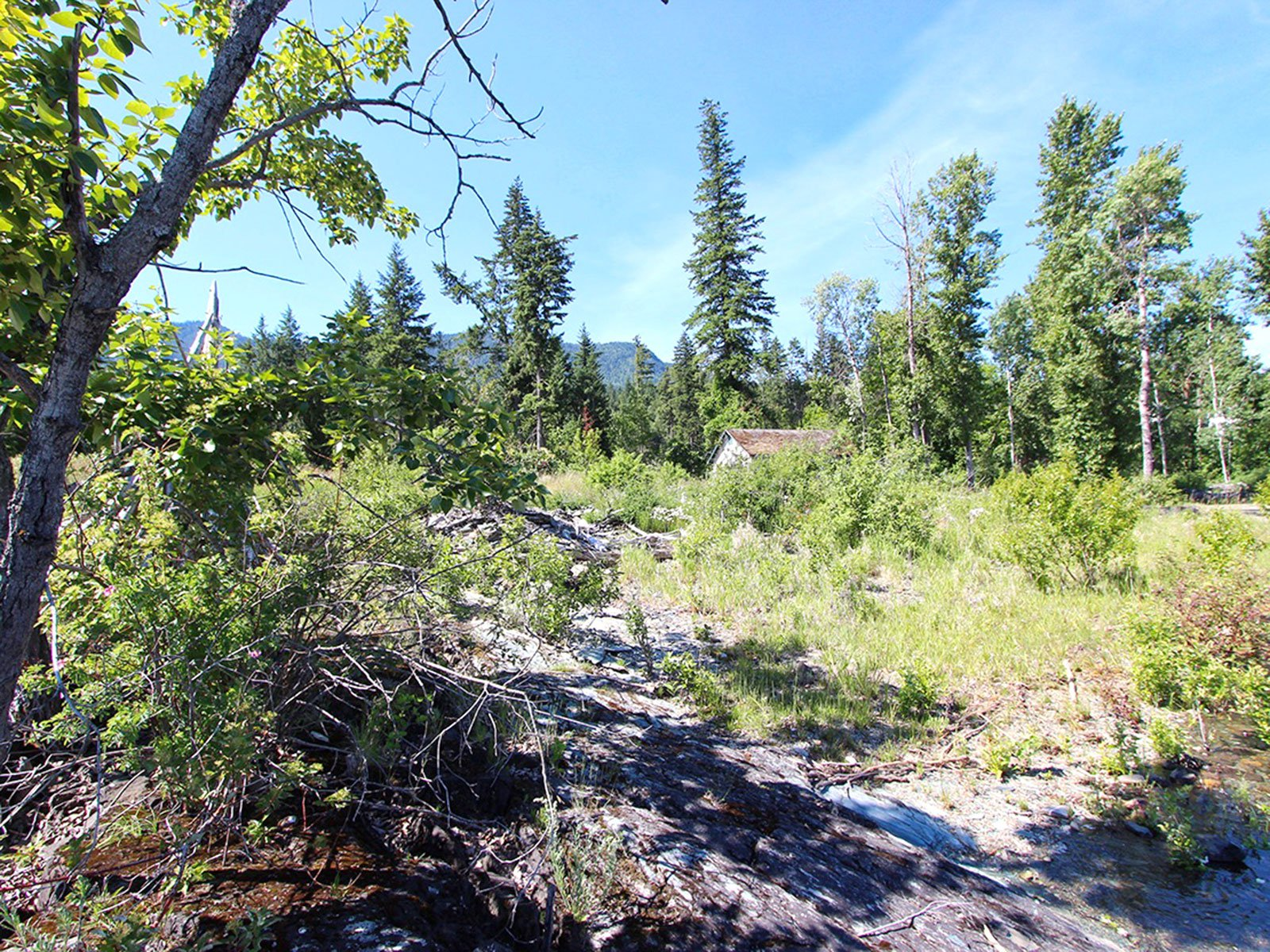 Photo 46: Photos: 663 Waverly Park Frontage Road in Sorrento, BC: Land Only for sale (Sorrento)  : MLS®# 10186241