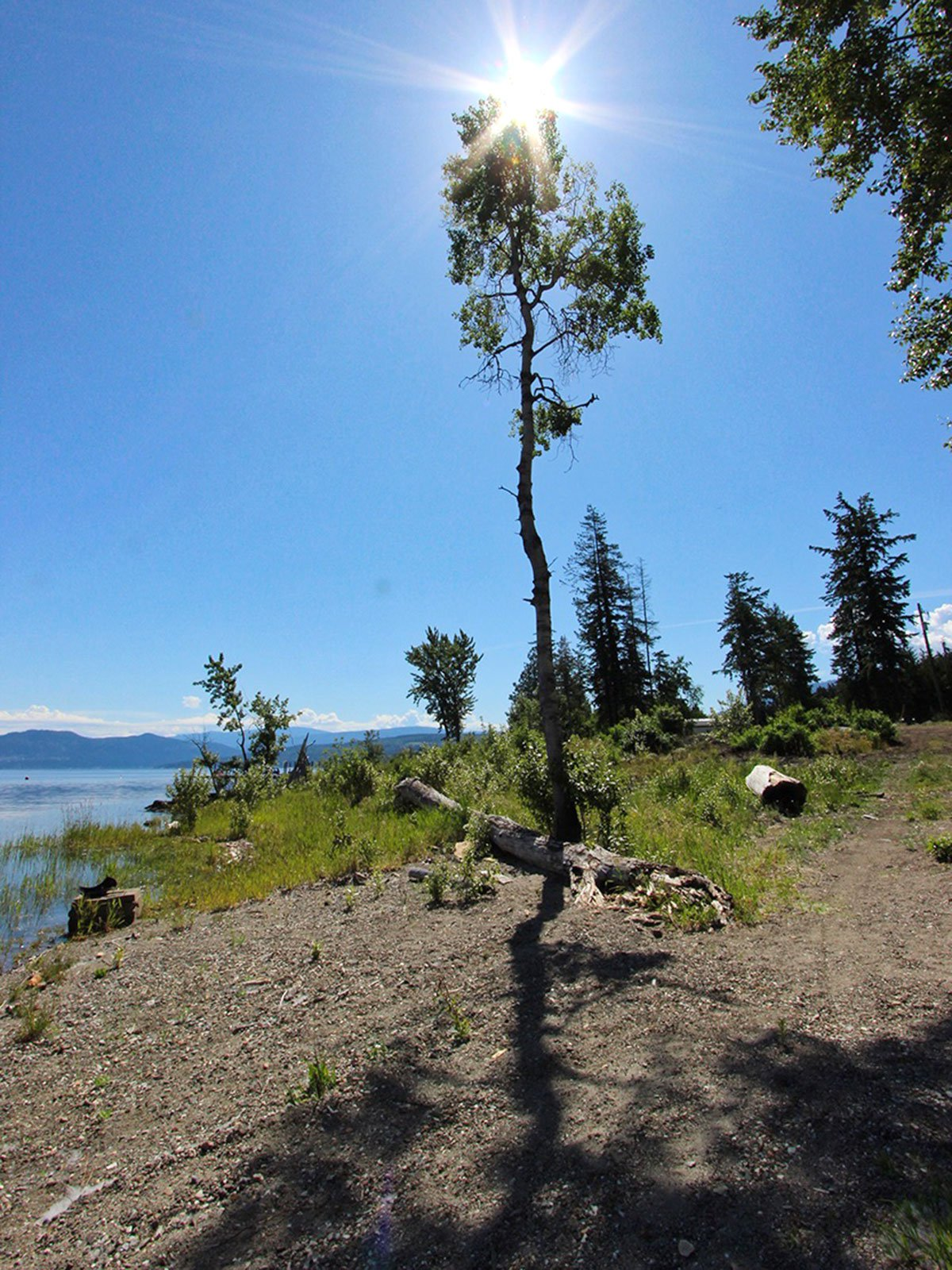 Photo 4: Photos: 663 Waverly Park Frontage Road in Sorrento, BC: Land Only for sale (Sorrento)  : MLS®# 10186241