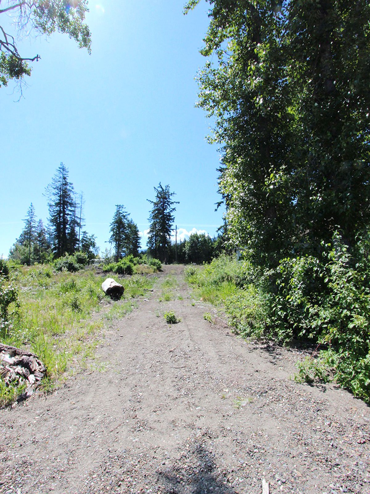 Photo 49: Photos: 663 Waverly Park Frontage Road in Sorrento, BC: Land Only for sale (Sorrento)  : MLS®# 10186241