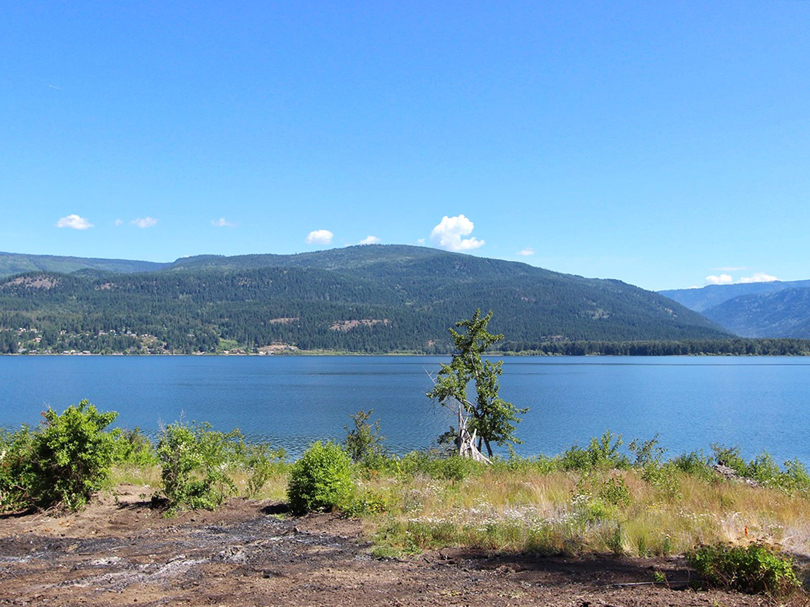 Photo 10: Photos: 663 Waverly Park Frontage Road in Sorrento, BC: Land Only for sale (Sorrento)  : MLS®# 10186241