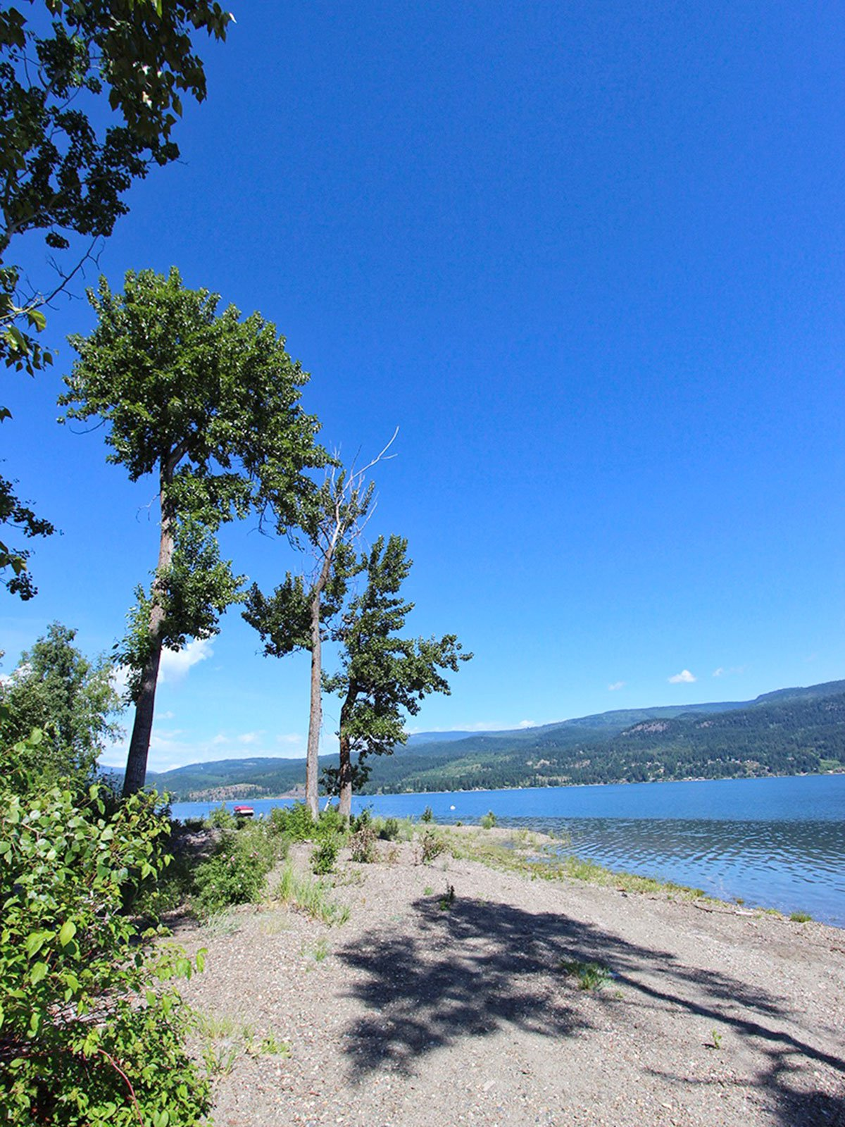 Photo 13: Photos: 663 Waverly Park Frontage Road in Sorrento, BC: Land Only for sale (Sorrento)  : MLS®# 10186241