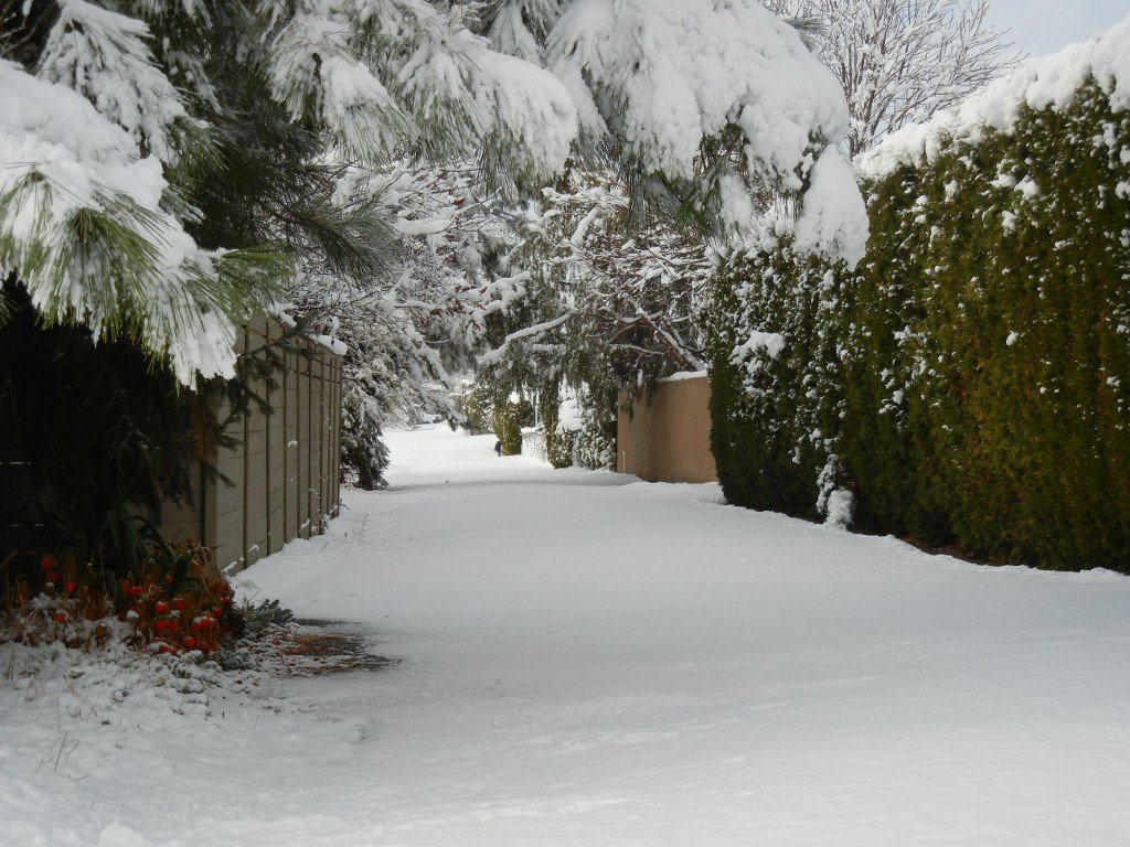 Photo 30: Photos: 3769 Navatanee Drive in Kamloops: South Thompson Valley House for sale : MLS®# 139607