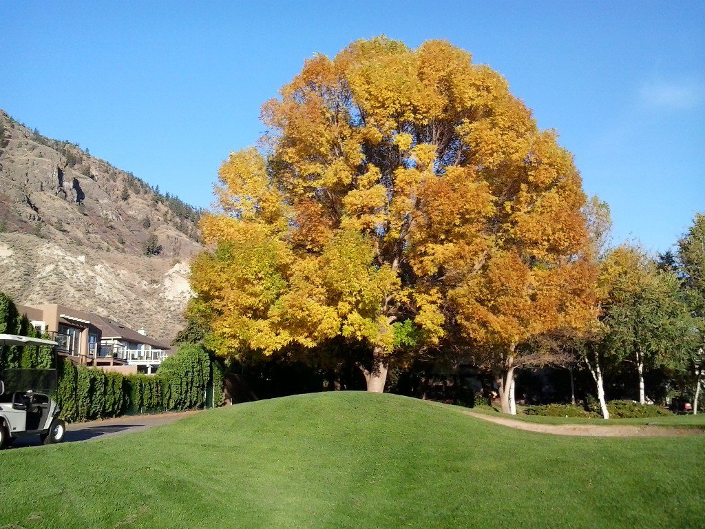 Photo 24: Photos: 3769 Navatanee Drive in Kamloops: South Thompson Valley House for sale : MLS®# 139607