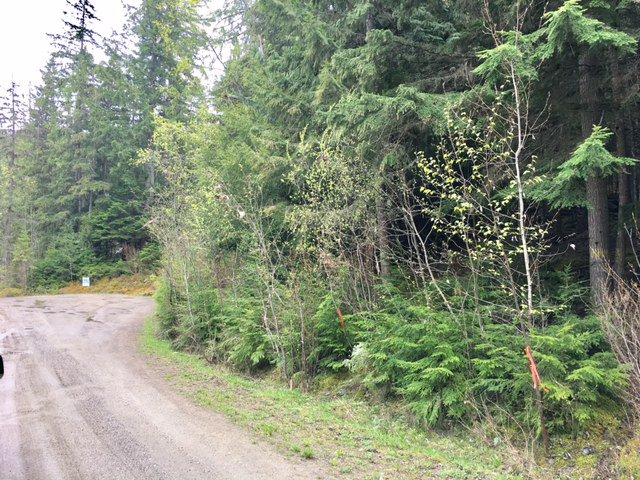 Photo 30: Photos: 3,4,6 Armstrong Road in Eagle Bay: Vacant Land for sale : MLS®# 10133907