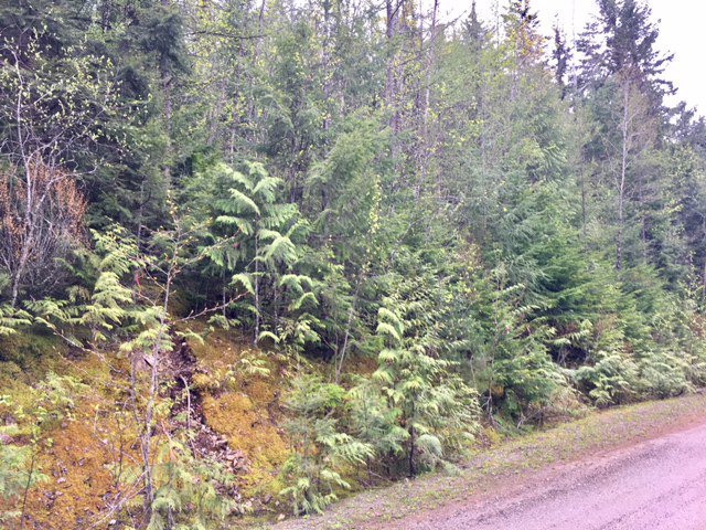 Photo 17: Photos: 3,4,6 Armstrong Road in Eagle Bay: Vacant Land for sale : MLS®# 10133907