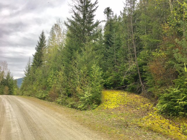 Photo 38: Photos: 3,4,6 Armstrong Road in Eagle Bay: Vacant Land for sale : MLS®# 10133907
