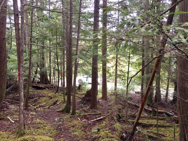 Photo 15: Photos: 3,4,6 Armstrong Road in Eagle Bay: Vacant Land for sale : MLS®# 10133907