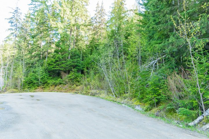 Photo 64: Photos: 3,4,6 Armstrong Road in Eagle Bay: Vacant Land for sale : MLS®# 10133907