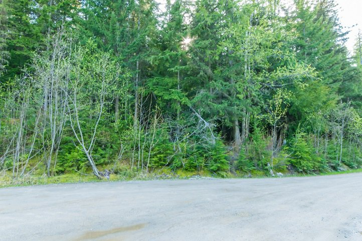 Photo 67: Photos: 3,4,6 Armstrong Road in Eagle Bay: Vacant Land for sale : MLS®# 10133907