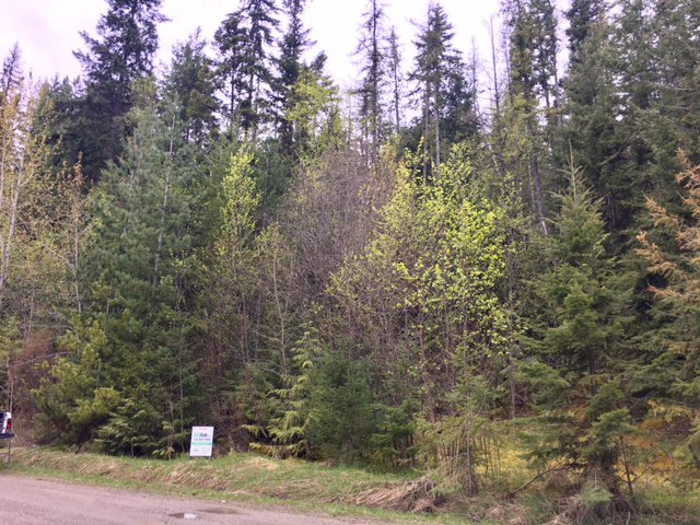 Photo 39: Photos: 3,4,6 Armstrong Road in Eagle Bay: Vacant Land for sale : MLS®# 10133907