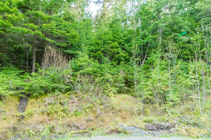 Photo 69: Photos: 3,4,6 Armstrong Road in Eagle Bay: Vacant Land for sale : MLS®# 10133907