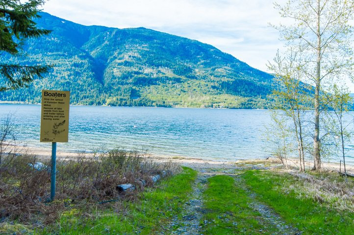 Photo 50: Photos: 3,4,6 Armstrong Road in Eagle Bay: Vacant Land for sale : MLS®# 10133907