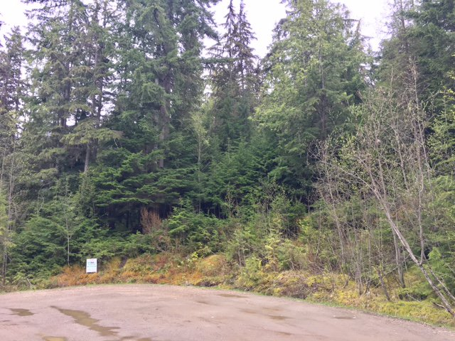 Photo 23: Photos: 3,4,6 Armstrong Road in Eagle Bay: Vacant Land for sale : MLS®# 10133907