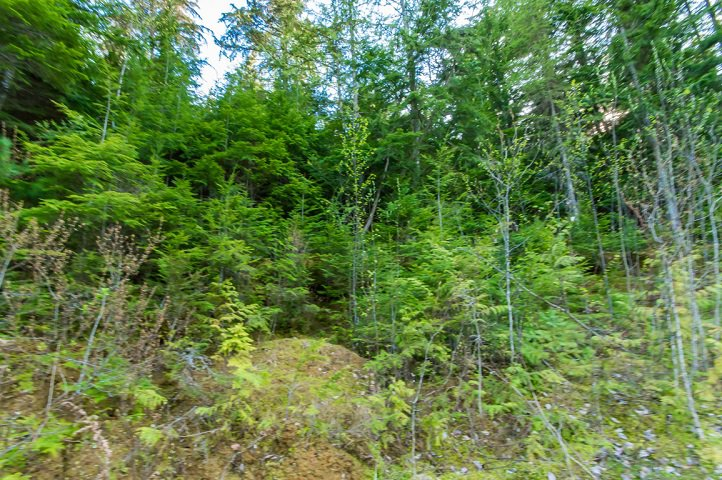 Photo 71: Photos: 3,4,6 Armstrong Road in Eagle Bay: Vacant Land for sale : MLS®# 10133907