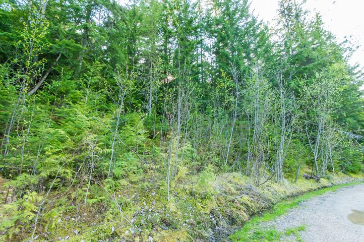 Photo 72: Photos: 3,4,6 Armstrong Road in Eagle Bay: Vacant Land for sale : MLS®# 10133907