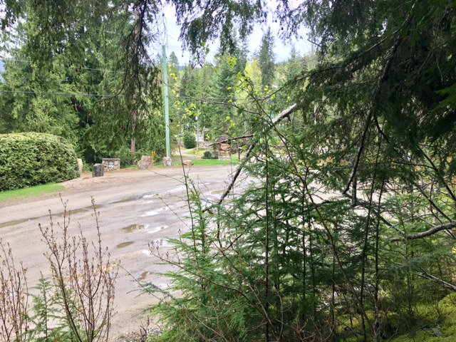 Photo 31: Photos: 3,4,6 Armstrong Road in Eagle Bay: Vacant Land for sale : MLS®# 10133907