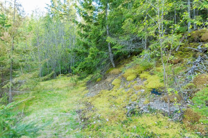Photo 81: Photos: 3,4,6 Armstrong Road in Eagle Bay: Vacant Land for sale : MLS®# 10133907