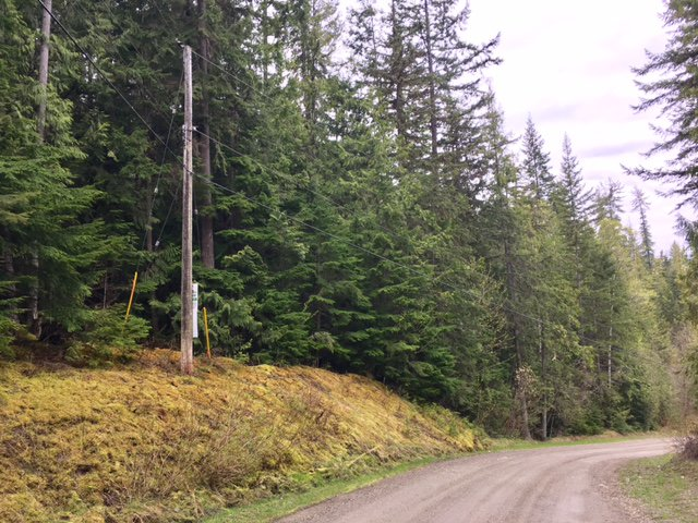 Photo 21: Photos: 3,4,6 Armstrong Road in Eagle Bay: Vacant Land for sale : MLS®# 10133907